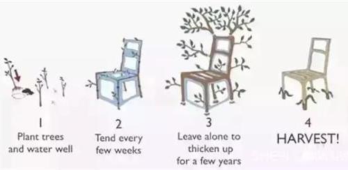 因为一个脑洞 英国艺术家种出了有故事的椅子
