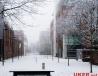曼彻斯特大学学校风景