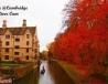 剑桥大学小河流