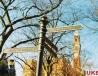 伯明翰大学校园路牌
