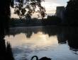约克大学湖畔