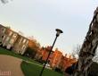 约克大学校园