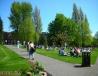 伯明翰大学草坪