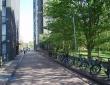 埃塞克斯大学校园图