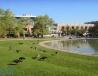 约克大学校园图