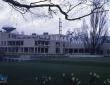 约克大学政治与哲学学院