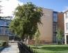 纽卡斯尔大学建筑学院