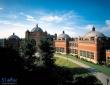 纽曼大学商学院