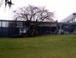 罗伯特戈登大学信息媒体学院