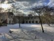 肯特大学校园